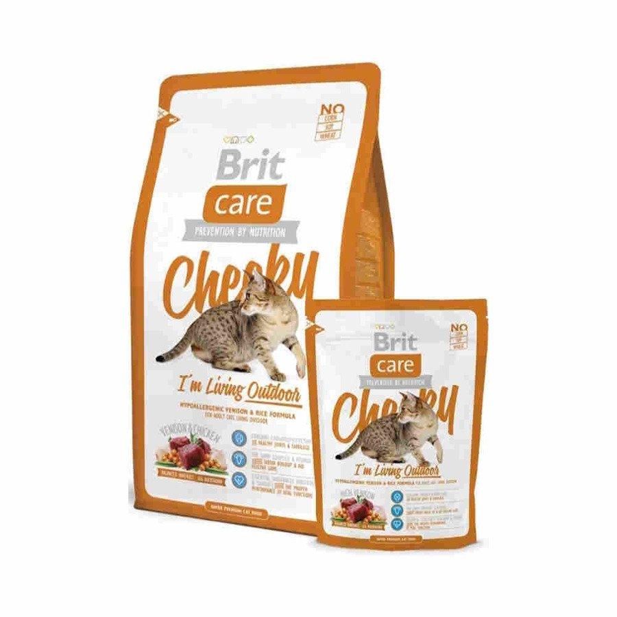 Brit Care Cheeky Hipoalergiczna karma sucha dla dorosłych kotów wychodzących na zewnątrz z dziczyzną i ryżem 400 g