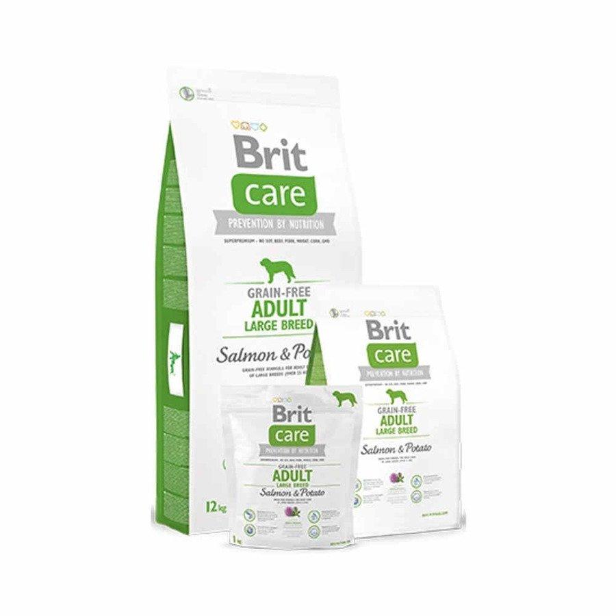 Brit Care GF Bezzbożowa karma sucha dla dorosłych psów ras dużych z łososiem i ziemniakami 1 kg