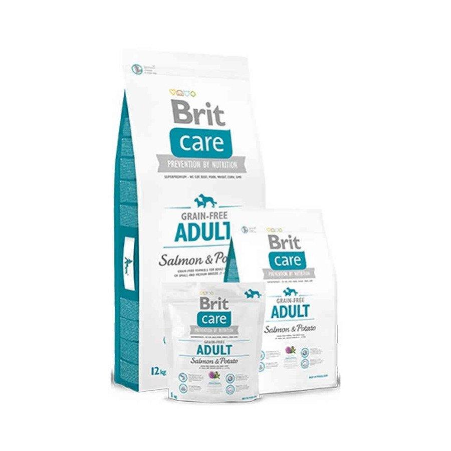 Brit Care GF Bezzbożowa karma sucha dla dorosłych psów ras małych i średnich z łososiem i ziemniakami 1 kg