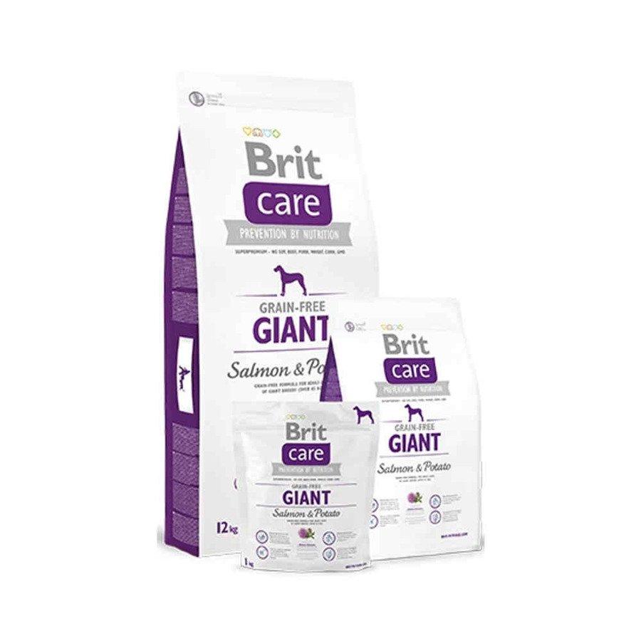 Brit Care GF Bezzbożowa karma sucha dla dorosłych psów ras olbrzymich z łososiem i ziemniakami 1 kg