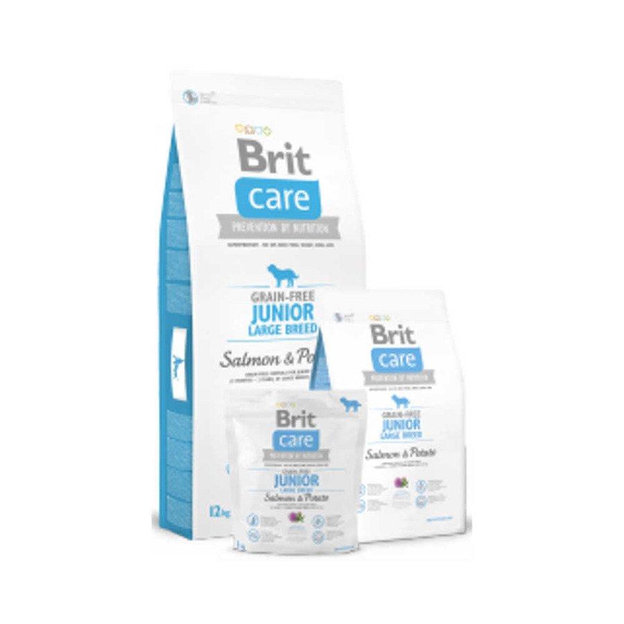 Brit Care GF Bezzbożowa karma sucha dla młodych psów ras dużych z łososiem i ziemniakami 1 kg