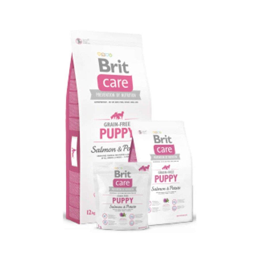 Brit Care GF Bezzbożowa karma sucha dla szczeniąt i młodych psów wszystkich ras z łososiem i ziemniakami 3 kg